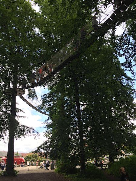 Schwindelfrei? Ganz schön hoch hinaus geht es beim Kletterparcours zwischen den Baumwipfeln.