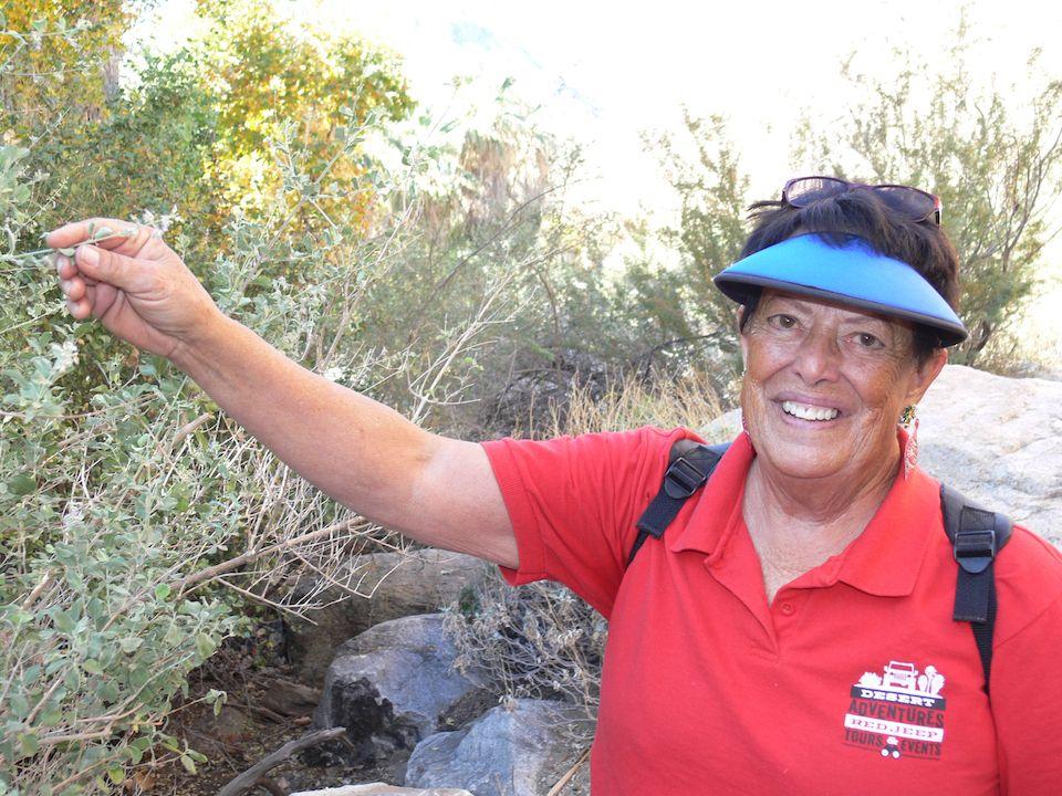 Wer Glück hat, trifft bei seiner Jeep-Safari durch die Indian Canyons im Coachella Valley auf Guide Nancy Cohee. Die Veteranin hat eine ganz besondere Lebensgeschichte.
