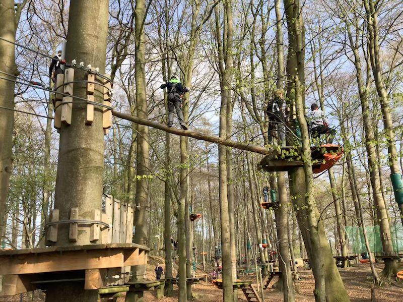 In den Bäumen ist überall Gewusel. Klettern macht eben vielen Menschen Spaß - zumindest solange man nicht mittendrin hängen bleibt.
