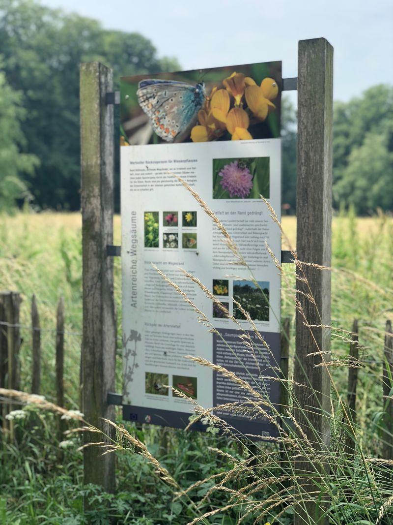 Interessante Info-Tafeln zeigen, was die Natur hier alles zu bieten hat.