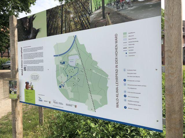 Der Wald-Klima-Lehrpfad in der Hohen Ward in Münster-Hiltrup ist rund zwei Kilometer lang.