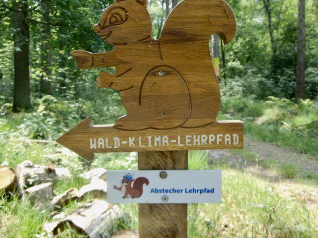 Das Eichhörnchen weist den Klimaschützern den Weg. Hier geht es zum Lehrpfad, der erklärt, woran man die verschiedenen Baumarten erkennen kann.