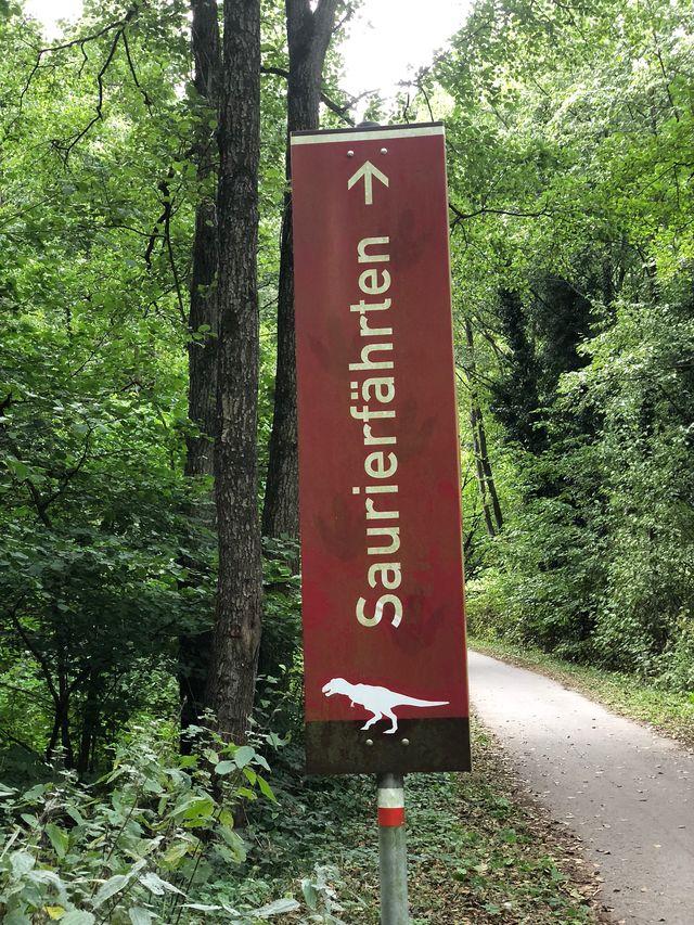 Vom Parkplatz an der Straße aus führt ein Weg in den Wald. Ab jetzt wird es langsam spannend!
