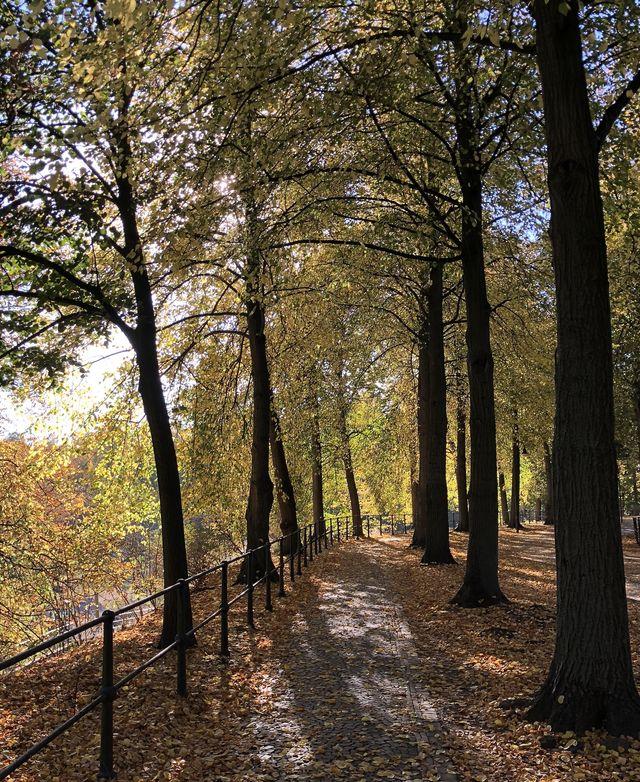 Über die Promenade sind es vom Schloss aus nur wenige Schritte bis zum Aasee.