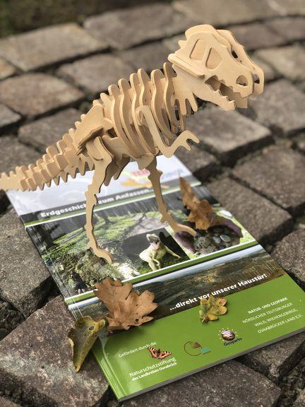 Mein Saurier-Skelett aus Holzteilen war gar nicht so einfach aufzubauen. Im Buch erfahre ich mehr über T-Rex, Brachiosaurus und Co.