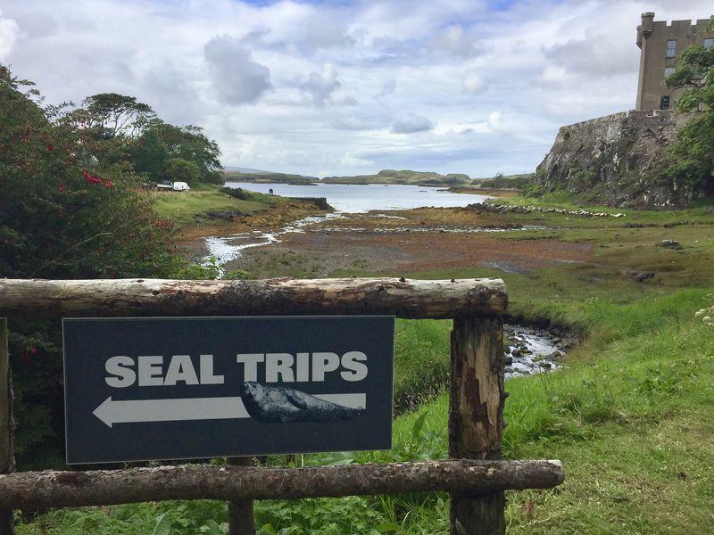 Regelmäßig legen Boote am Steg unterhalb des Schlosses ab, um die Touristen für ein Foto möglichst nah an die Robbenfelsen heranzubringen.