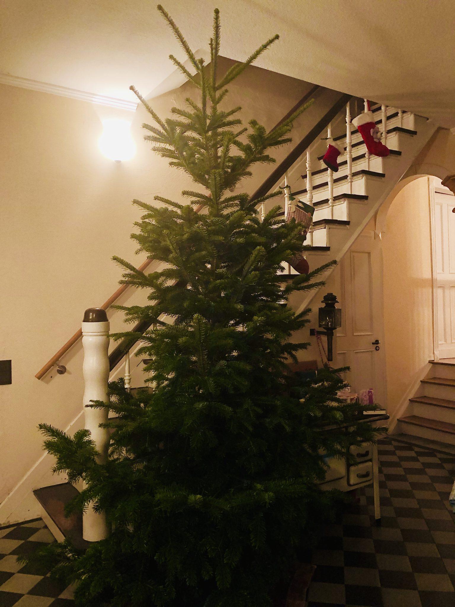 Hinten Treppe, rechts der alte Ofen: Da kommen Löcher gerade recht.