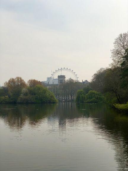 Mit seiner Höhe ist das London Eye ein Blickfang. Auch vom St. James Park aus.