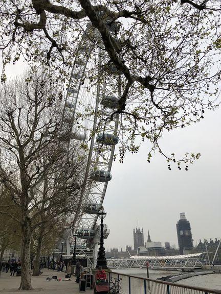 Je näher man dem Millennium Wheel kommt, desto voller wird es am Themseufer.