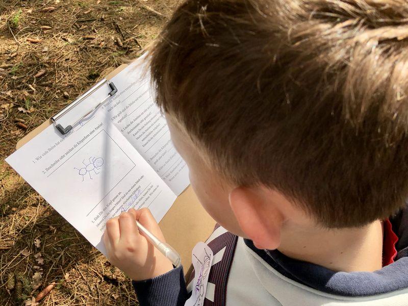 Wir Kinder bekommen anschließend einen Aufgabenzettel und werden zu Ameisen-Forschern.