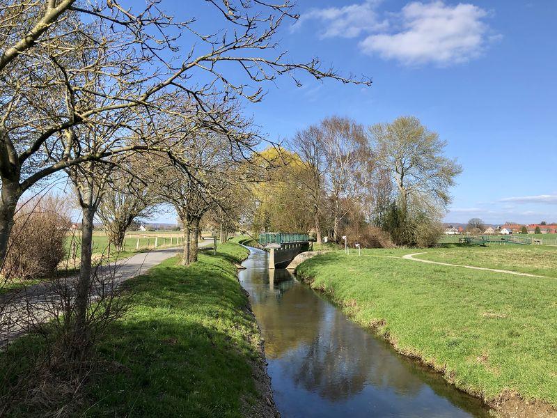 Schon von Weitem erkennt man, worum es sich bei der Bifurkation handelt: Aus einem Fluss werden zwei.