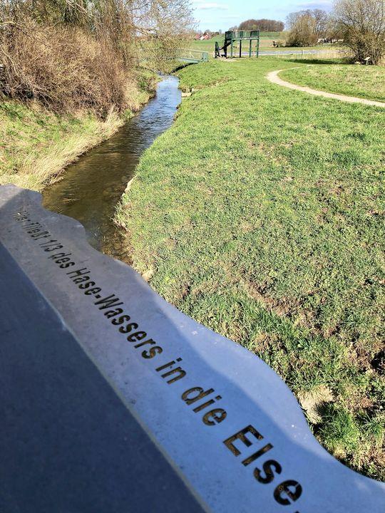 Für die Else blieb am Ende ein Drittel Wasseranteil übrig.