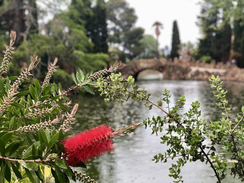 Der Auftraggeber Salvador Samà i Torrents stattete den Parc Samà mit zahlreichen Pflanzenarten aus - einheimischen wie exotischen.