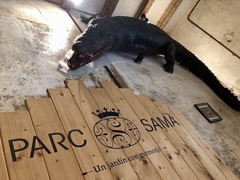 Ein Krokodil in Katalonien? Der Auftraggeber des Parks, Salvador Samà i Torrents, hatte das ausgestopfte Tier aus Kuba mitgebracht.