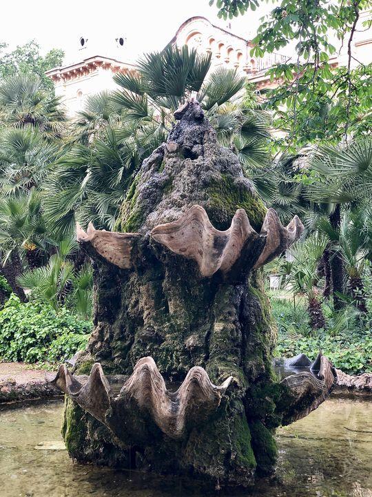 Diese imposanten Muscheln aus der Südsee fanden in einem Brunnenkunstwerk Verwendung.
