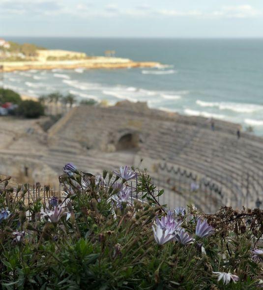 Spuren der Römer: Auf einer Anhöhe über dem Mittelmeer thront das noch immer beeindruckende Amphitheater von Tarragona.