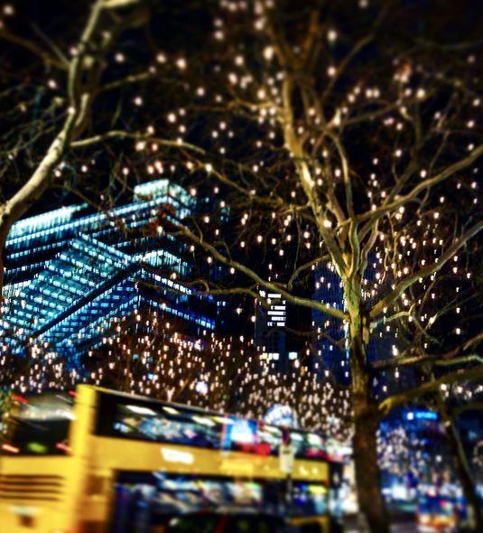 Gerade in der Vorweihnachtszeit verwandelt sich die Metropole in ein glitzerndes Lichtermeer.