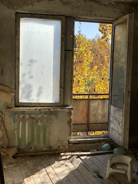 Besuch in Tschernobyl: Die Idylle trügt: Vor dem Fenster das blühende Leben - aber auch die Gefahr.