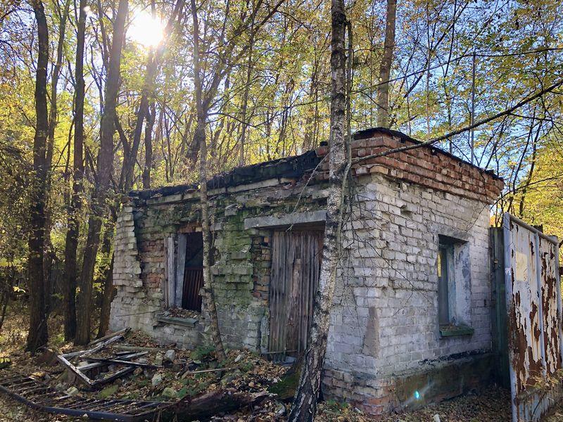 Besuch in Tschernobyl: In der Zone stoßen die Besucher schnell auf die ersten Ruinen. Die Evakuierung lief in wenigen Stunden ab.