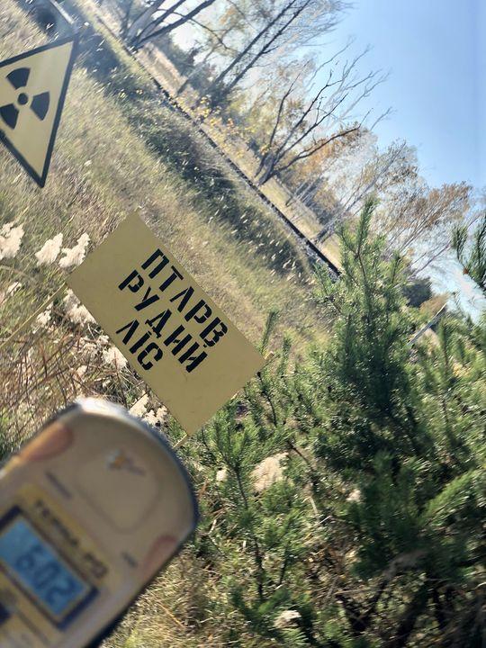 An bestimmten Hotspots können sie allerdings noch einmal um ein Vielfaches höher sein. Schilder warnen die Besucher.