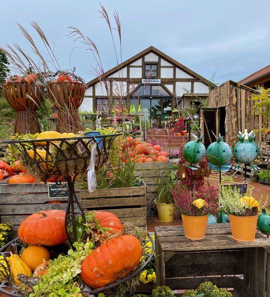 Jetzt im Herbst steht der Betrieb auf Hof Löbke ganz im Zeichen von Kürbis und Co.